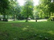 Park1